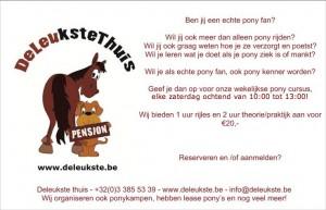 Pony-cursus-zaterdag-2